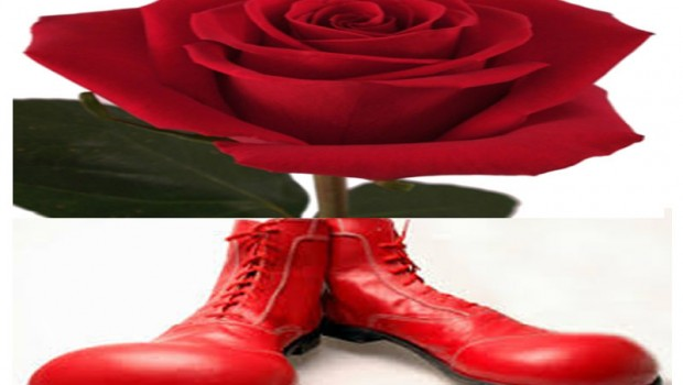 rose and clown shoes